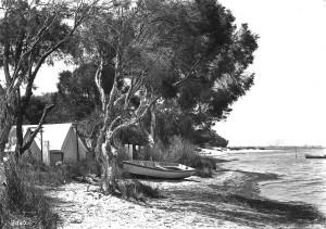 Perth and environs 4